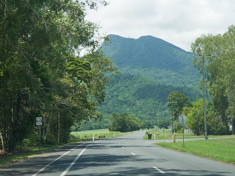 Onderweg naar Mossman Gorge