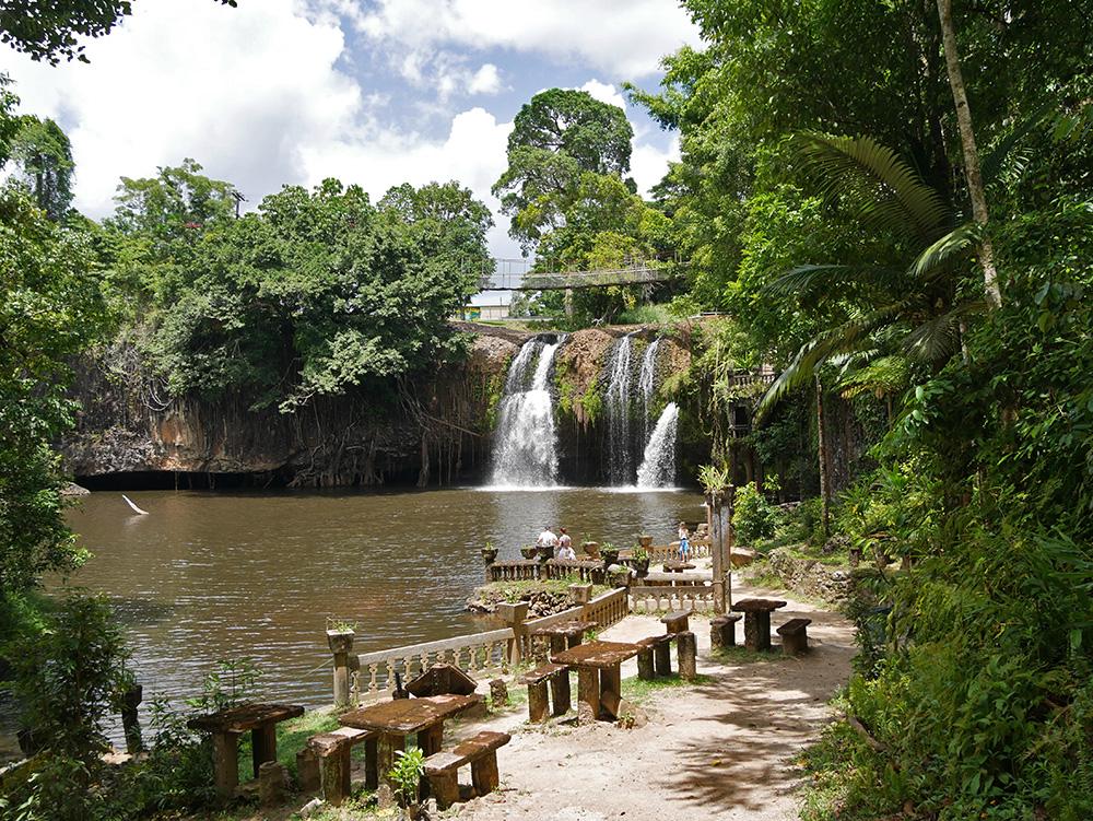 Uitzicht op Mena Creek Watervallen - Paronella Park