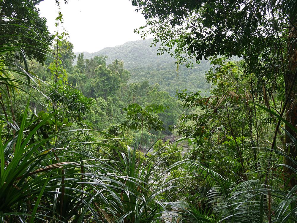 Schitterend vergezicht op de bergen en al het groen