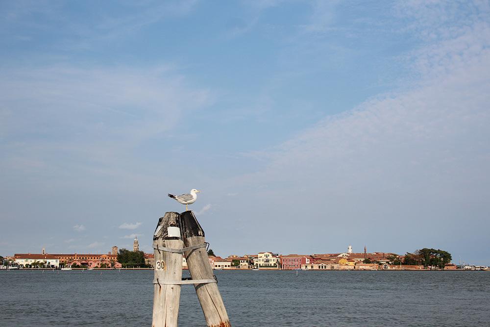 Uitzicht op het eiland Murano vanaf de vaporetto - Venetië