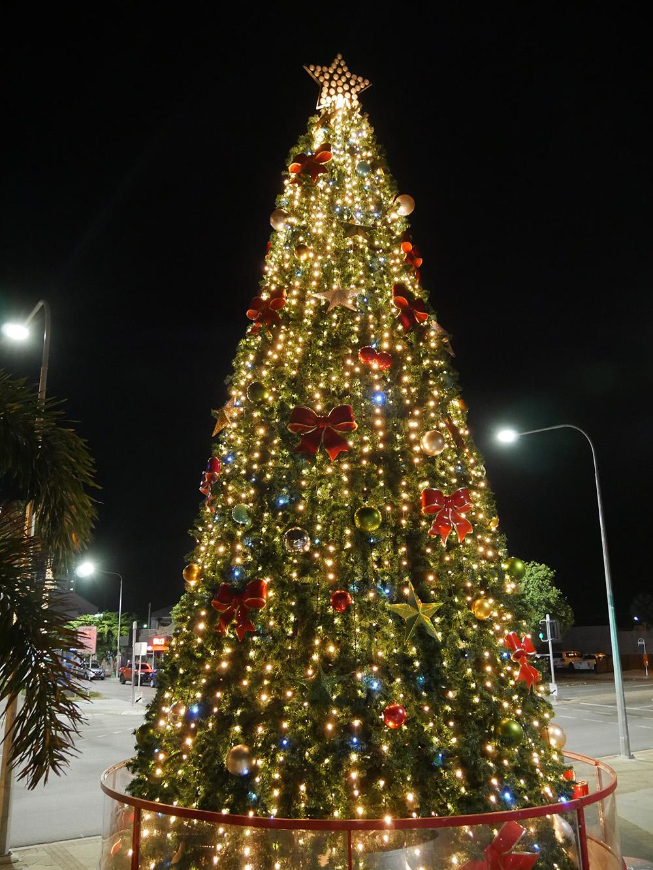 Mooi versierde kerstboom