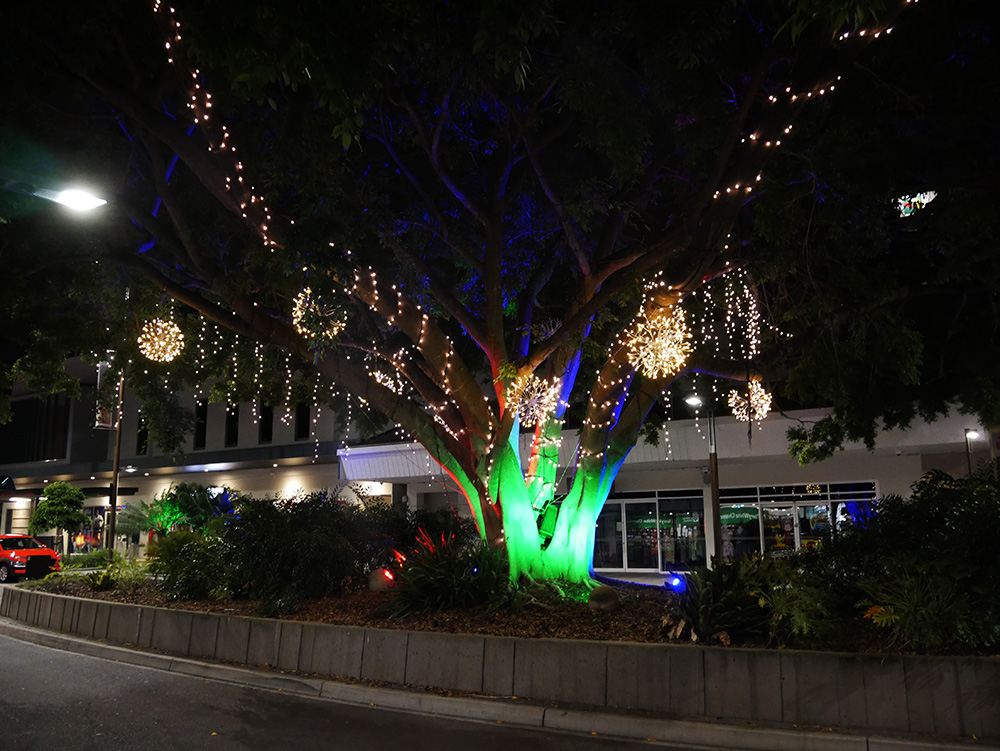 Overal verlichte bomen
