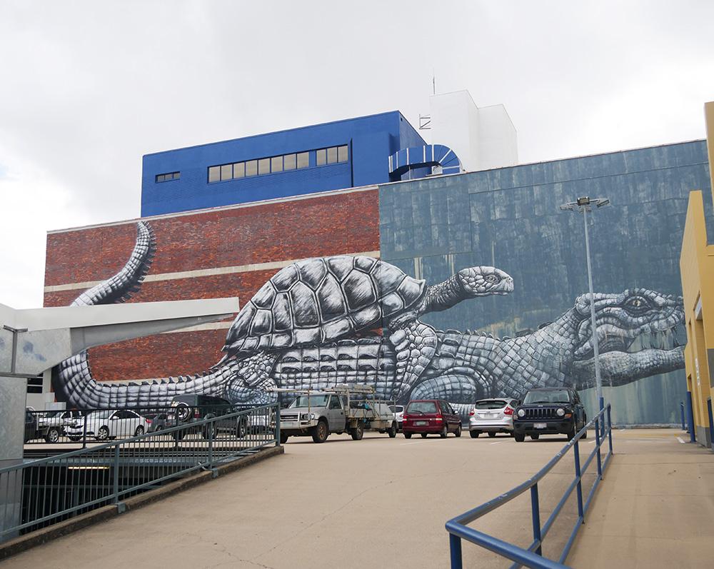 Een bijzondere street art in Townsville