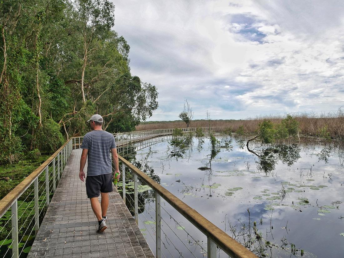 Mooi aangelegde wandelpaden over het water - Woodlands to Water Lilies Walk
