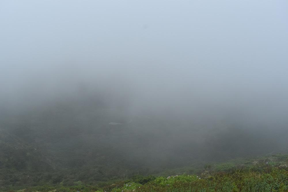 De Caldeira do Faial in mist gehuld
