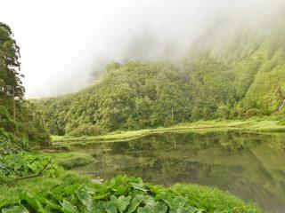 Pico, Flores & Terceira: 3 adembenemende eilanden op de Azoren